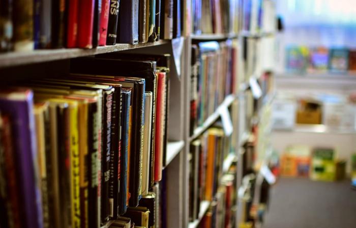 Evento conta com mais de 100 empresas do segmento literário, espalhadas em cerca de 50 estandes. Foto: Pixabay/Reprodução da Internet