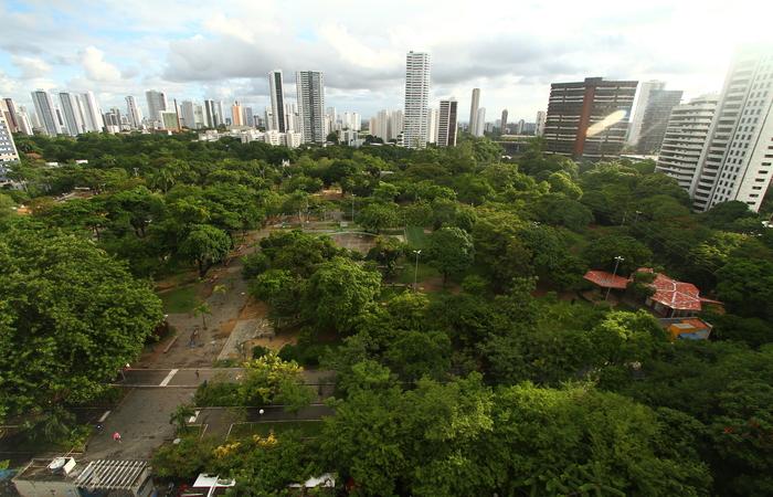 Área de sete hectares, que no século 18 pertencia ao comerciante Henrique Martins, já foi campo de futebol. Foto: Peu Ricardo/DP