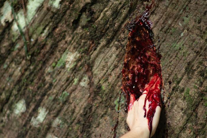 Performance foi realizada a partir de residência artística na floresta amazônica. Foto: Itaú Cultural/Divulgação