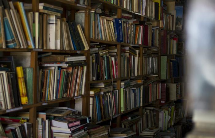 Literatura e ciências humanas são os enfoques do local. Foto: Leo Malafaia/Esp. DP