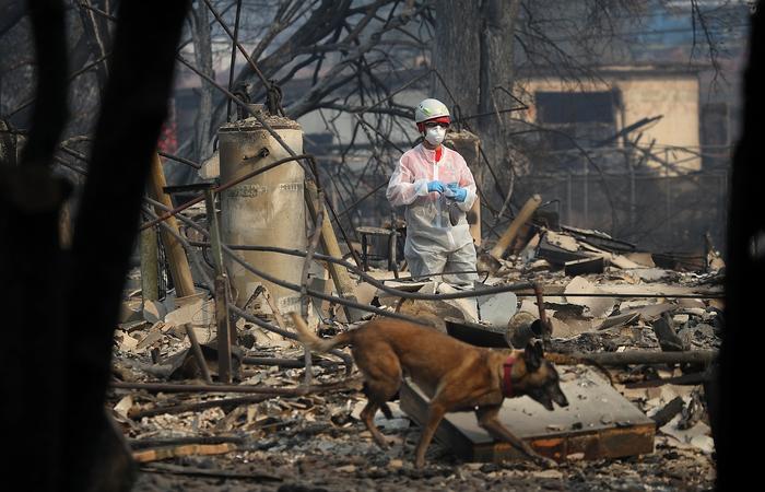Foto: JUSTIN SULLIVAN/AFP