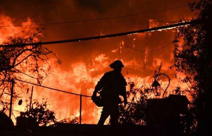 Foto: AFP/ Robyn Beck