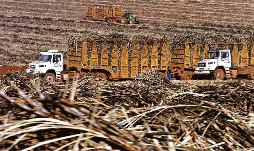 Brasil assinou acordo para a redução de 144 mil toneladas de açúcar em alimentos industrializados até 2022. Foto: Marcos Michelin/EM/D.A PRESS
