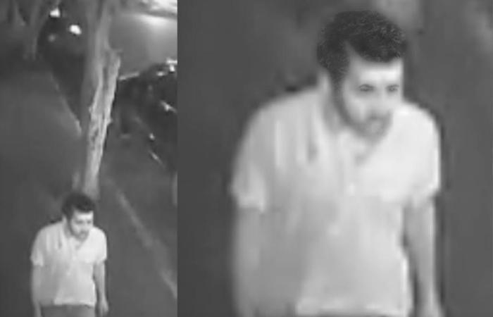 Imagens do assassino feitas com câmeras de videomonitoramento - Foto: Polícia Civil/Divulgação