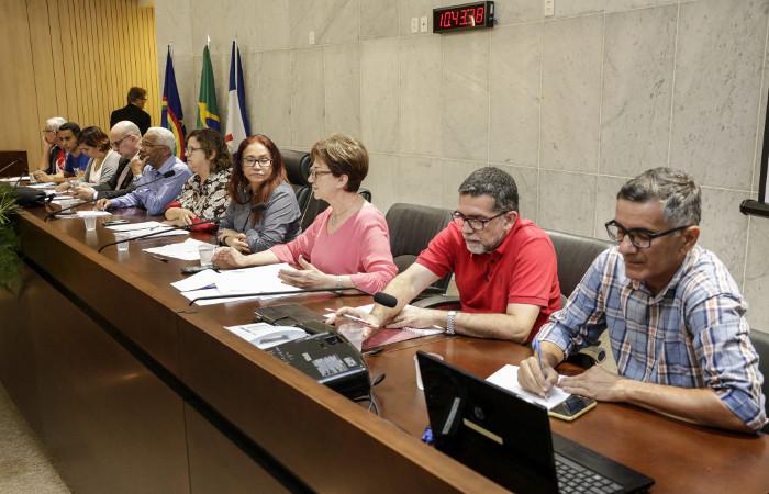 A matéria foi discutida na Comissão de Educação nesta quarta-feira, no auditório Sérgio Guerra. Foto: Alepe