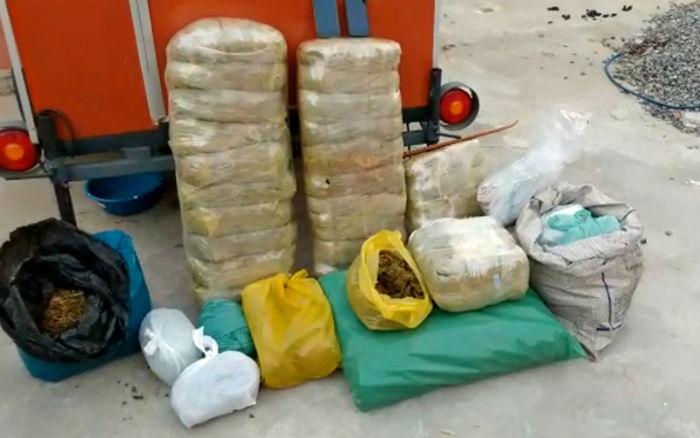 Na época, em Olinda foram apreendidos mais de 50 quilos de maconha. Foto: Polícia Civil de Pernambuco/Divulgação. (Na época, em Olinda foram apreendidos mais de 50 quilos de maconha. Foto: Polícia Civil de Pernambuco/Divulgação.)