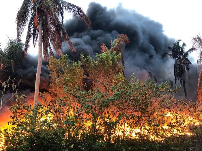 O fogo estava no terreno de uma fábrica de plásticos e atingiu uma grande extensão. Foto: Corpo de Bombeiros de Pernambuco/Divulgação.