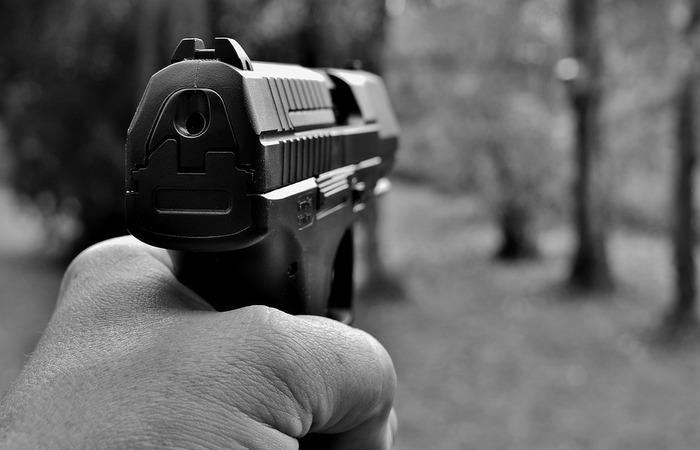 As despesas incluem a compra do armamento, da munição e regularização. Foto: Reprodução/Pixabay