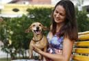 Alguns truques podem ajudar donos a condicionarem os cães a fazem suas necessidades sempre no mesmo lugar (Blenda Souto Maior/DP/D.A Press)