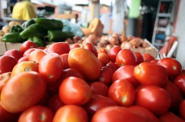 No período, os preços de 13 itens essenciais à alimentação do brasileiro subiram 17,81% na capital pernambucana (Honório Moreira/OIMP/D.A Press)