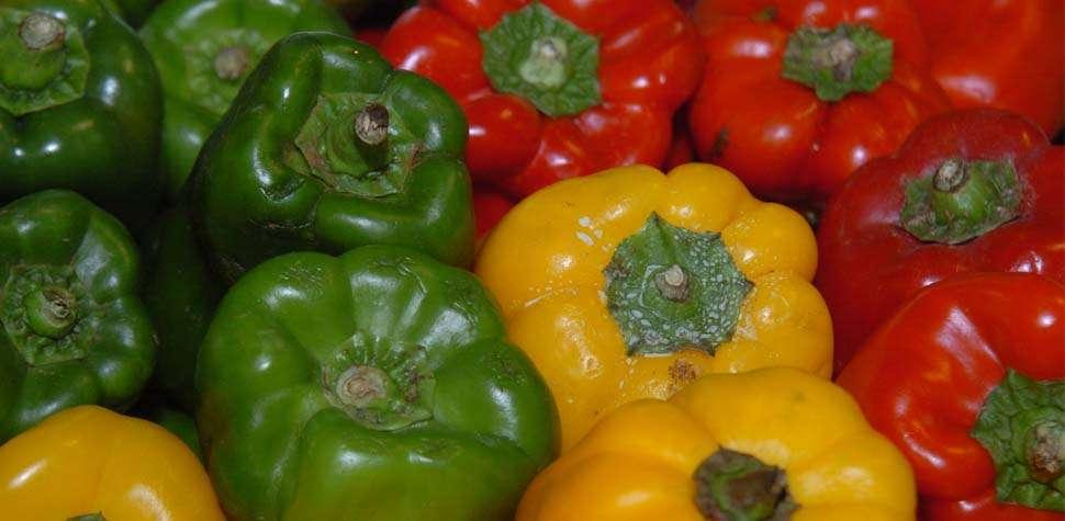 Agrot�xicos, o veneno no nosso prato  (Jaqueline Maia/DP/DA Press)