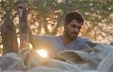 Festival de Veneza exibe 12 filmes via streaming (Mateus S�/Divulga��o)