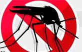 Pernambuco tem 646 casos de microcefalia (Arte DP/D.A.Press)