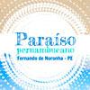 Fernando de Noronha - Paraíso Pernambucano (Arte Taís Nascimento)