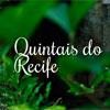 Quintais do Recife (Taís Nascimento/DP/DA Press)
