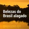 Belezas do Brasil alagado (Inês Campelo/DP/D.A Press)